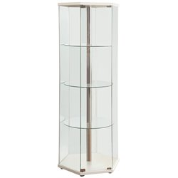 Bowery Hill 4 Shelf Glass Hexagon Curio Cabinet in White