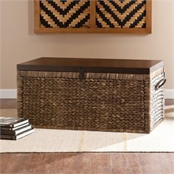 Pemberly Row Trunk Coffee Table in Blackwash
