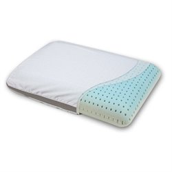 Pemberly Row King Memory Foam Pillow in White
