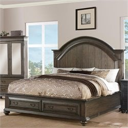 Beaumont Lane Queen Panel Storage Bed in Old World Oak