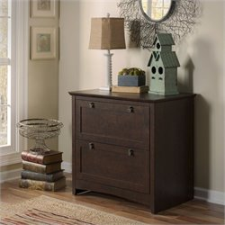 Bush Buena Vista 2 Drawer Lateral File Cabinet in Madison Cherry