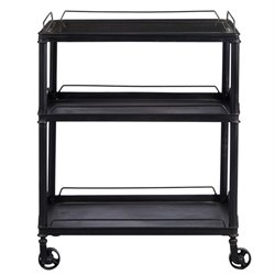 Pulaski Accentrics Home Mirrored Tray Top Metal Bar Cart in Black